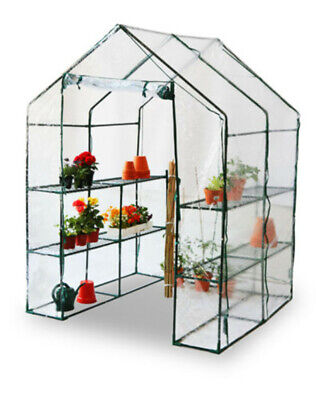 Walk-In Large Greenhouse With Shelves/Pvc Plastic Cover Outdoor Garden New