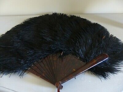 Antique Ostrich Feather Fan - Black