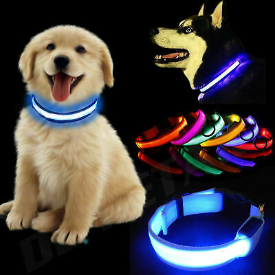 USB Rechargeable LED Dog Collar Flashing Luminous Safety Light Up Bright Glowing