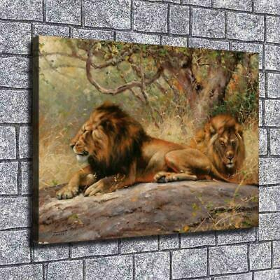 """12""""x16""""African lions Paintings HD Print on Canvas Home Decor Wall Art Pictures"""