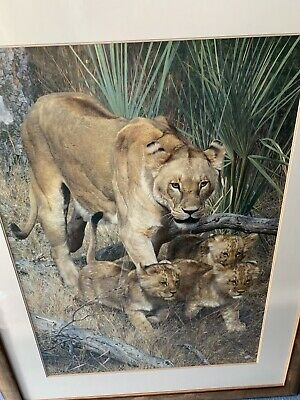 Mill Pond Press Limited Edition Print Of Lioness & Cubs