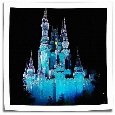 """16""""x16""""Disney Castle Paintings HD Print on Canvas Home Decor Wall Art Pictures"""