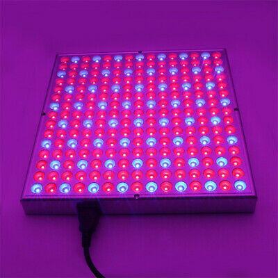 Light THerapy pAnEL