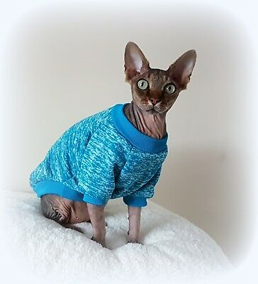 long sleeves MARL TURQUOISE cat jumper for a Sphynx  cat, cat clothes, sweater