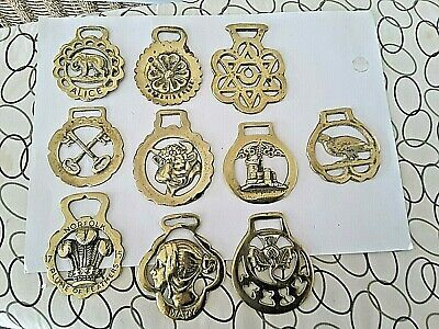 horse brasses 10 all  great condition