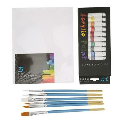 Art Painting Kit Artist Paint Set With Paints Brushes Tube Acrylic Paint Supply