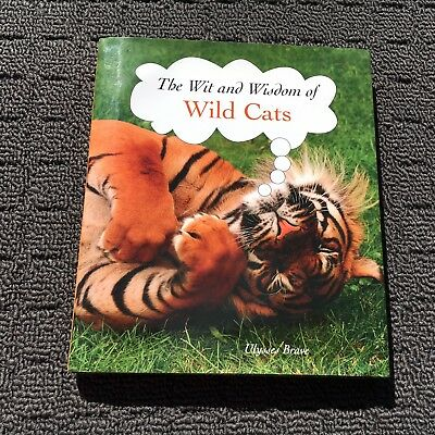 THE WIT & WISDOM OF WILD CATS Gorgeous Book Filled With Photos (2008) Hardcover