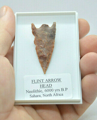 Quallity Ancient Stone age, Neolithic FLINT ARROW HEAD ,6000 years old !