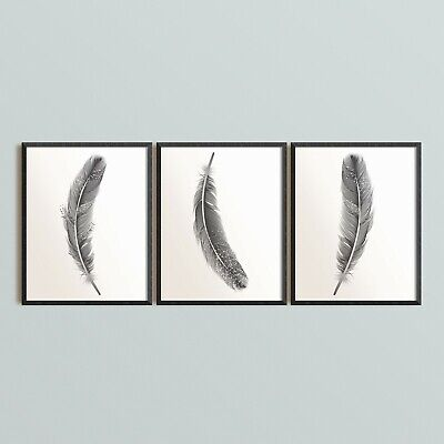 3 Feathers Set Wall Art Prints Black Colour Feather Poster Minimalist A4 Frames