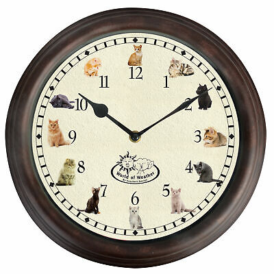 Cat Sounds Meow Chime Round Wall Clock Kitten Blue Tabby Ginger Black 30cm