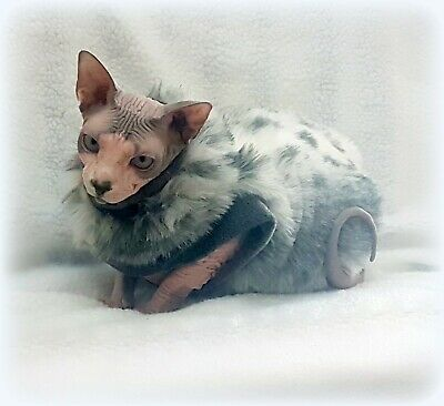extra warm fake FUR Sphynx cat clothes, Sphynx clothes for winter HOTSPHYNX