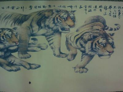 Very Rare Large Long Old Chinese Scroll Hand Painting Five Powerful Tigers Marks
