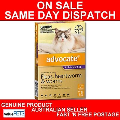 Advocate for Cats Purple Over 4kg 6 Pack Fleas Intestinal Heartworm