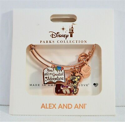Disney Alex Ani 2019 Gold Bangle 2 Bracelet Set Up You Are My Greatest Adventure