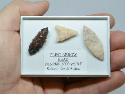 3 x ANCIENT STONE AGE FLINT ARROWHEADS, NEOLITHINC TOOLS, Great stocking filler