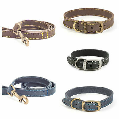 Ancol Collar & Lead Timberwolf - Grey/Sable/Blue/Tan *FREE UK DELIVERY*