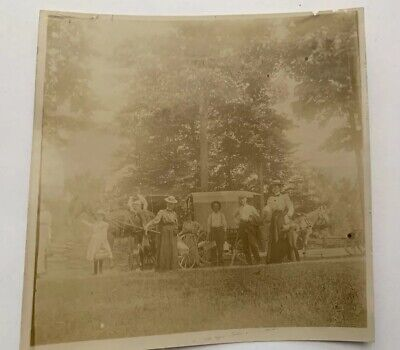 Original Antique Early 1900's Horse Drawn Carriage - Camping Photo Photograph