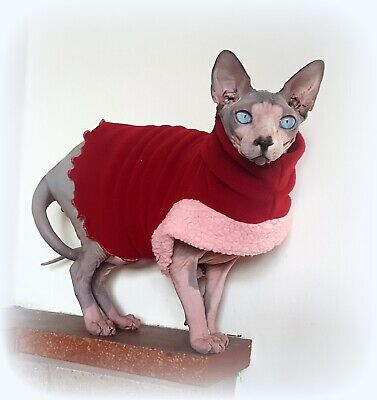comfy CHRISTMAS jumper for a Sphynx cat, Spehynx cat clothes, cat top Hotsphynx