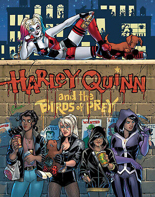 Harley Quinn And The Birds Of Prey #1 Amanda Conner Cover Dc Comics