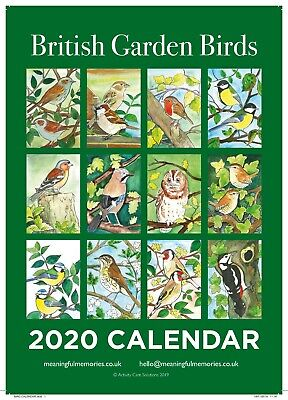 A4 2020 calender - British garden birds by Meaningful Memories
