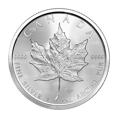 1 oz 2020 Canadian Maple Leaf Silver Coin