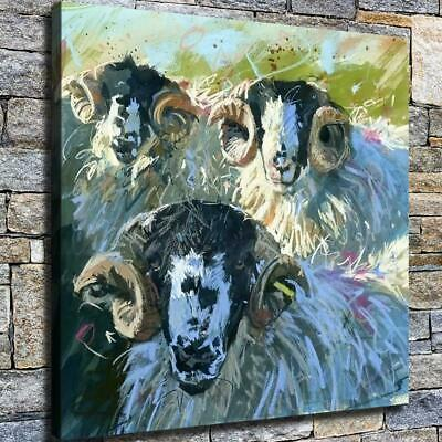 "12""x12"" Three Sheep Paintings HD Canvas prints Home decor Room Wall art Pictures"