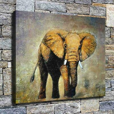 "12""x16"" Elephant Oil Painting HD Canvas prints Home decor Room Wall art Pictures"