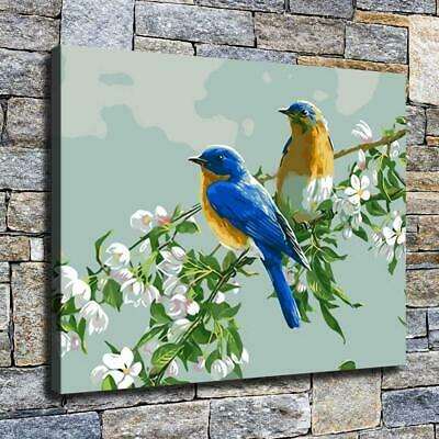 """12""""x16"""" Blue Back Bird Paints HD Canvas prints Home decor Room Wall art Pictures"""