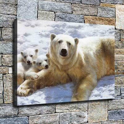 """12""""x18"""" Bear Family Paintings HD Canvas prints Home decor Room Wall art Pictures"""