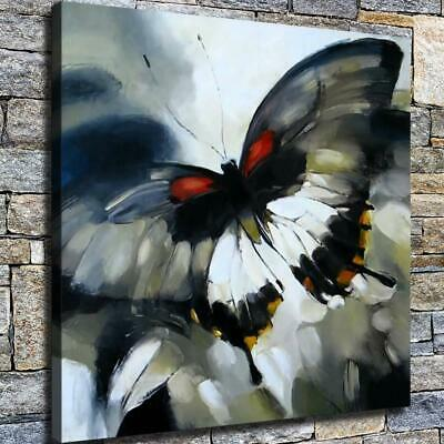 "12""x12"" Ink Butterfly Paints HD Canvas prints Home decor Room Wall art Pictures"
