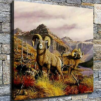 """12""""x12"""" Big Horn Sheep Painting HD Canvas print Home decor Room Wall art Picture"""