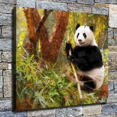 "12""x14"" Panda Eating Bamboo HD Canvas prints Home decor Room Wall art Pictures"