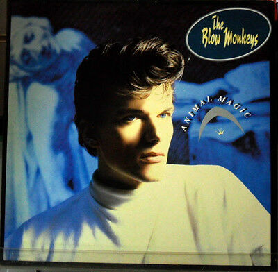 The Blow Monkeys: Animal Magic - LP Promo White Label
