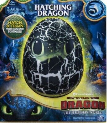 New How To Train Your Dragon Hatching Toothless Dragon