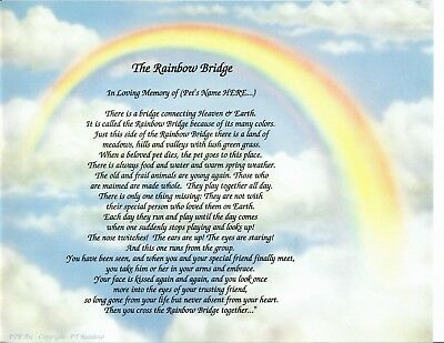 RAINBOW BRIDGE PET Memorial I ONLY WANTED YOU Personalized Print Name POEM