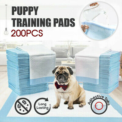200pcs Puppy Pet Dog Pads 60x60cm Indoor Cat Toilet Training Absorbent AU
