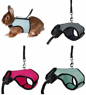 Dwarf Rabbit Harness Full Body Adjustable Harness & Lead Set Various Colours