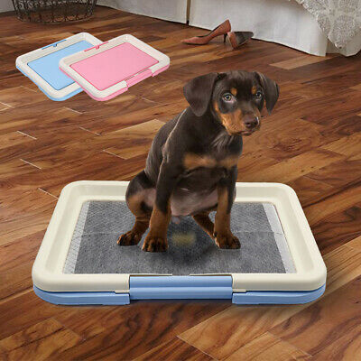 Large Pee Pads Dog Toilet Potty For Puppy Pet Training Synthetic Mat Tray