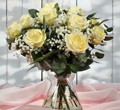 Homeland Florists 12 Large White Rose Bouquet Delivered, Fresh S, white