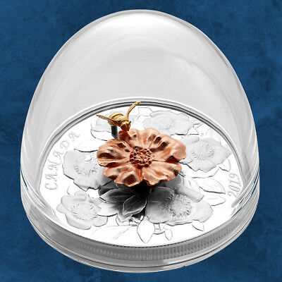 Canada - The Bumble Bee e The Bloom - 50 $ 2019 Pp / Proof - Argento Hummel
