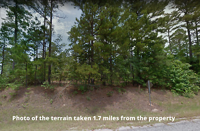 Rosston, Arkansas 1.0 acre lot - NO RESERVE $1 opening Bid
