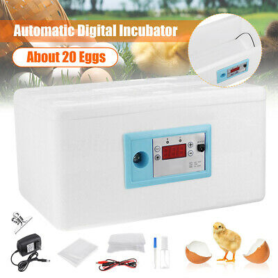 20 Egg Automatic Turning Digital Incubator Poultry Hatcher Temperature Control