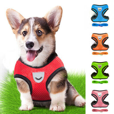 Adjustable Pet Dog Mesh Breathable Vest Harness Leash Small Puppy Walking Rope