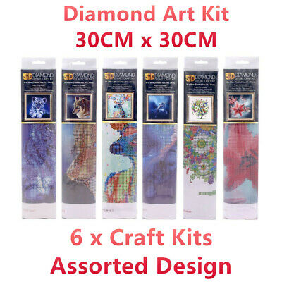 6x 5D Diamond Art Craft Kit DIY Drawing Numbered Painting Home Wall Decor Canvas