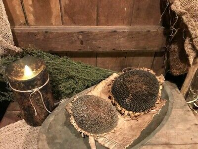 Primitive Dried Sunflower Bowl Fillers Homestead Early Look Cupboard Tuck  #A