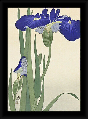 NATURE JAPAN Ohara Koson BIRD FLOWER POSTER ART PRINT PICTURE BB127B