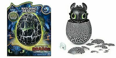 DreamWorks Dragons Hatching Toothless Interactive Baby Dragon w// Bonus Download