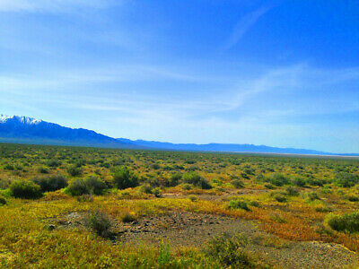 Rare 40 Acre Eureka County Nevada Ranch~Adjoins Blm Land  Cash Sale! No Reserve!