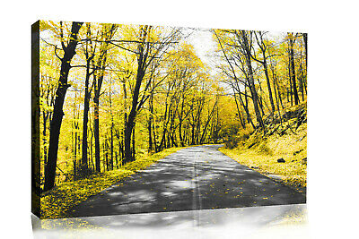 Yellow Trees Lined Road Landscape Canvas Wall Art Picture Print - ALL SIZES