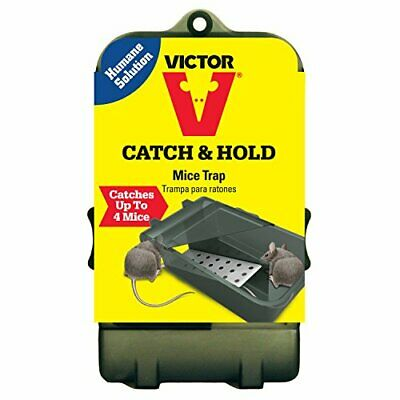 Victor Multiple Catch Humane Mouse Trap